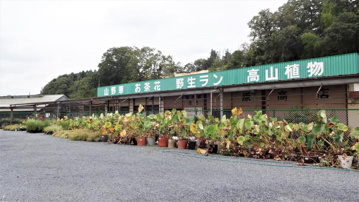 f:id:hidejirokun:20190927153220j:plain