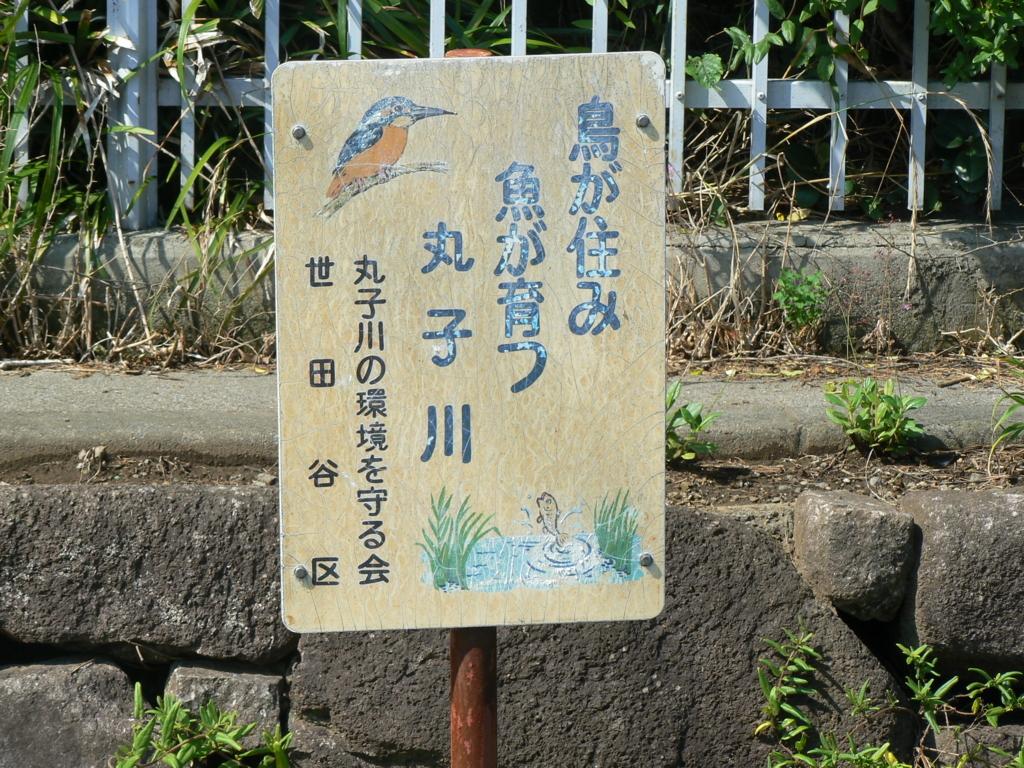 f:id:hideki-sansho:20171003090757j:plain
