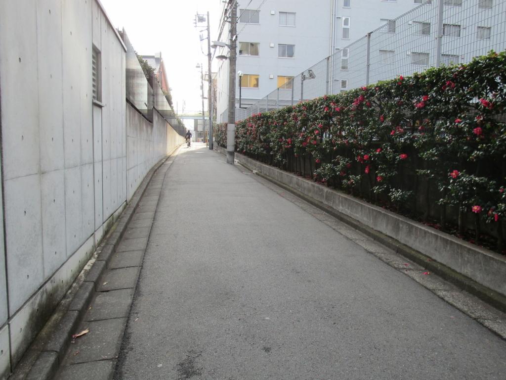 f:id:hideki-sansho:20180118173204j:plain