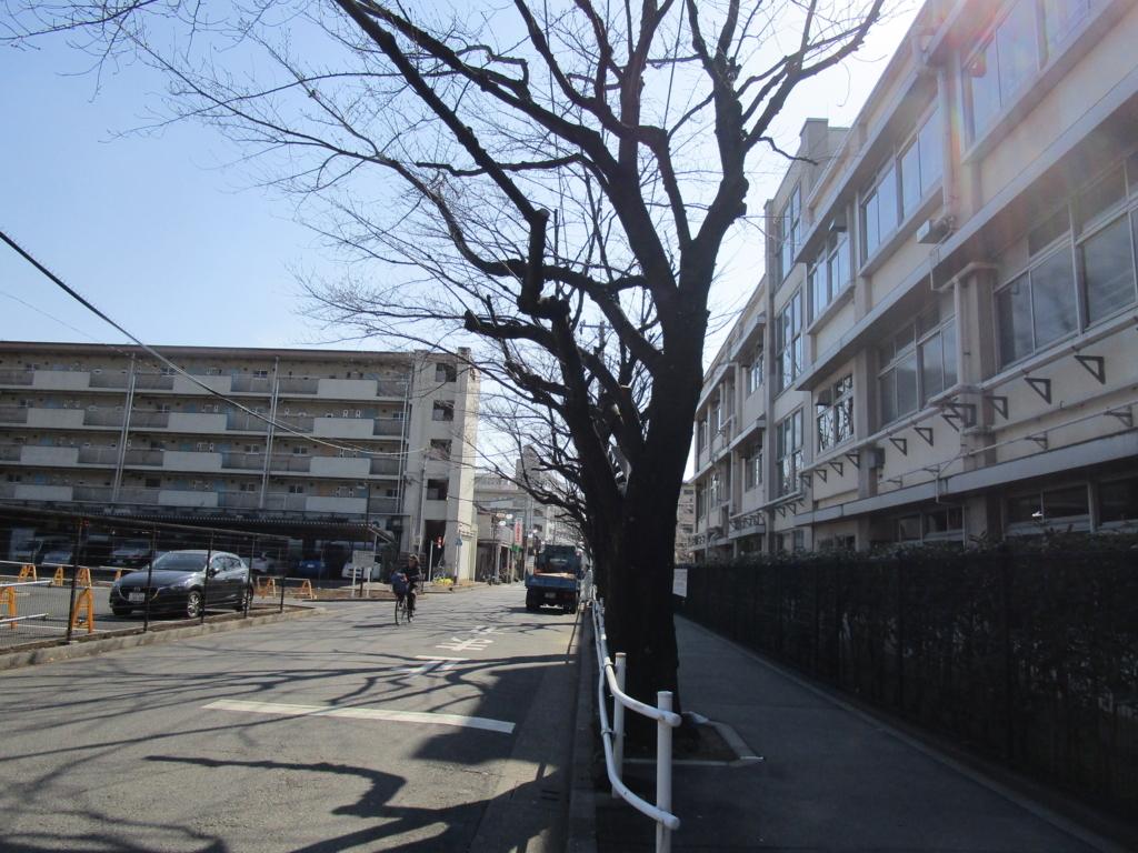 f:id:hideki-sansho:20180221085433j:plain