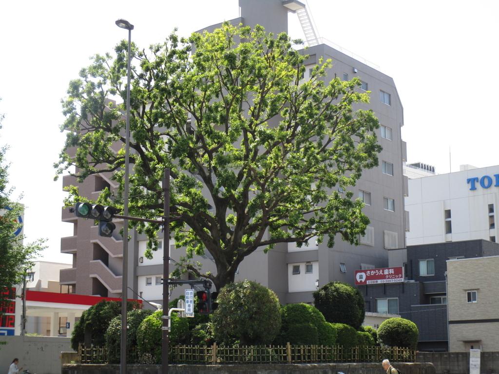f:id:hideki-sansho:20180421190600j:plain