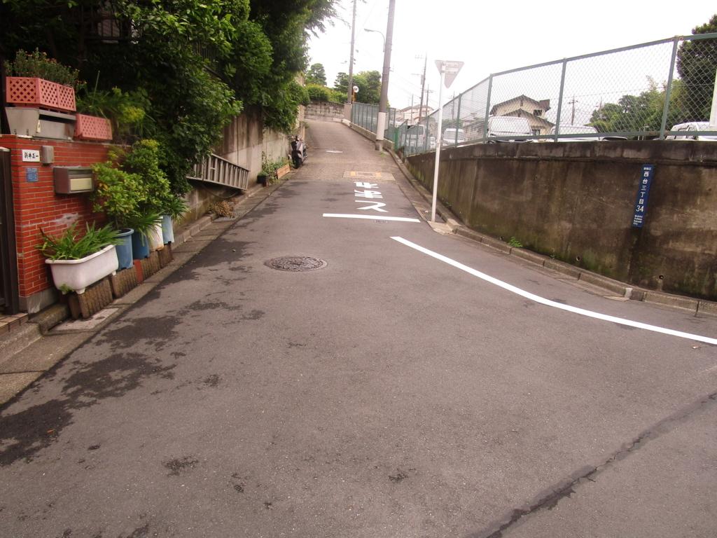 f:id:hideki-sansho:20180510092652j:plain