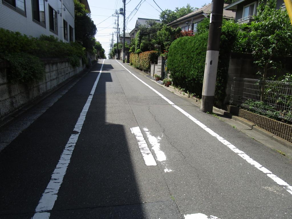 f:id:hideki-sansho:20180601042301j:plain