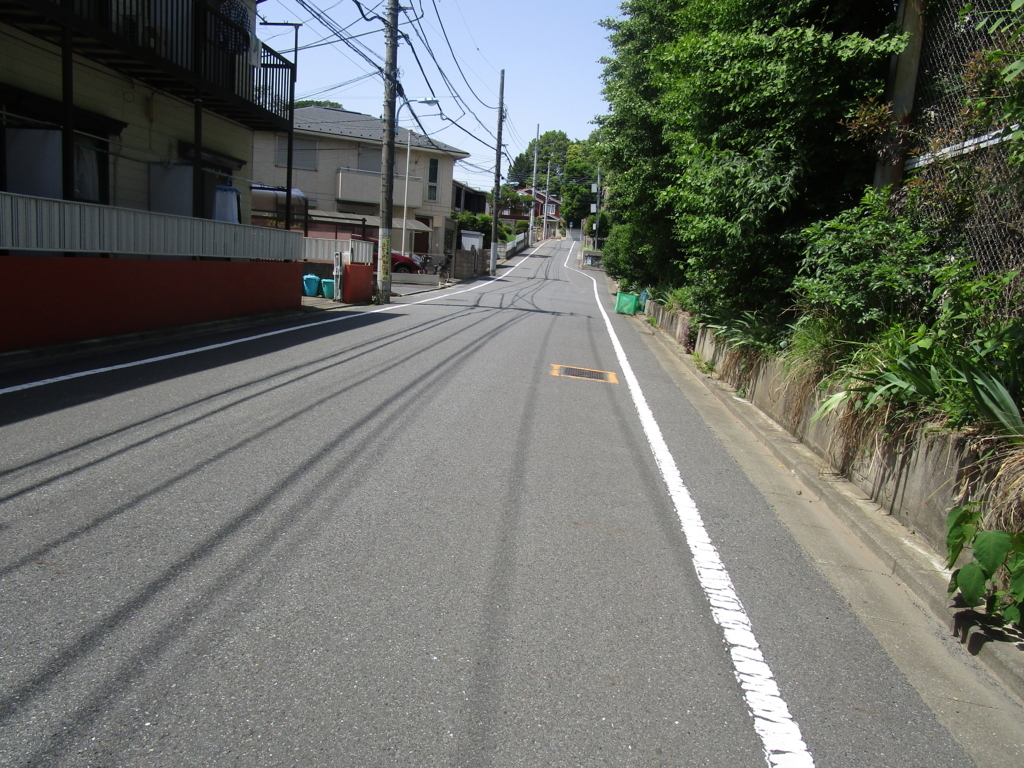 f:id:hideki-sansho:20180601050822j:plain