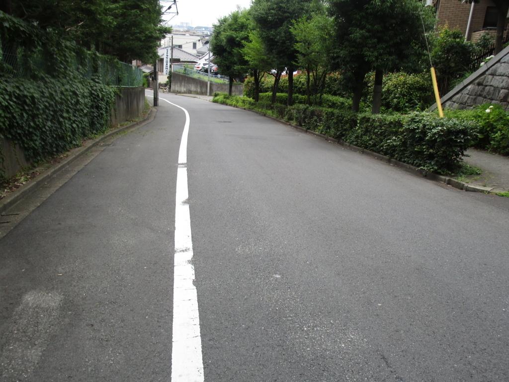 f:id:hideki-sansho:20180617182649j:plain