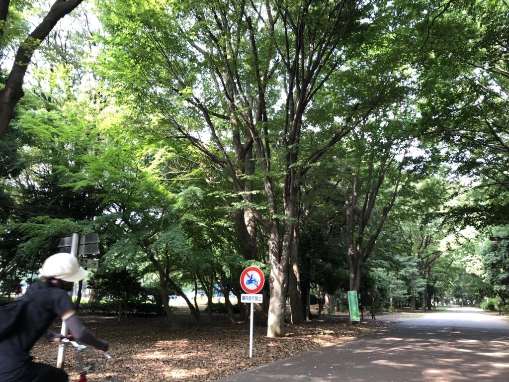 f:id:hideki-sansho:20180724135106j:plain