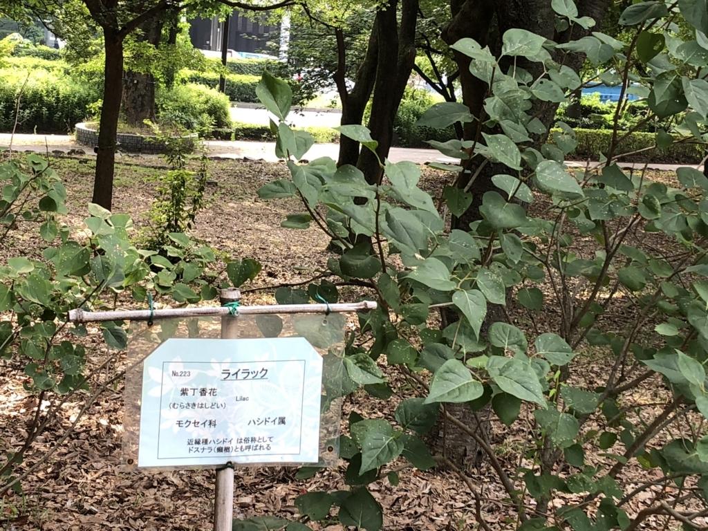 f:id:hideki-sansho:20180724140806j:plain