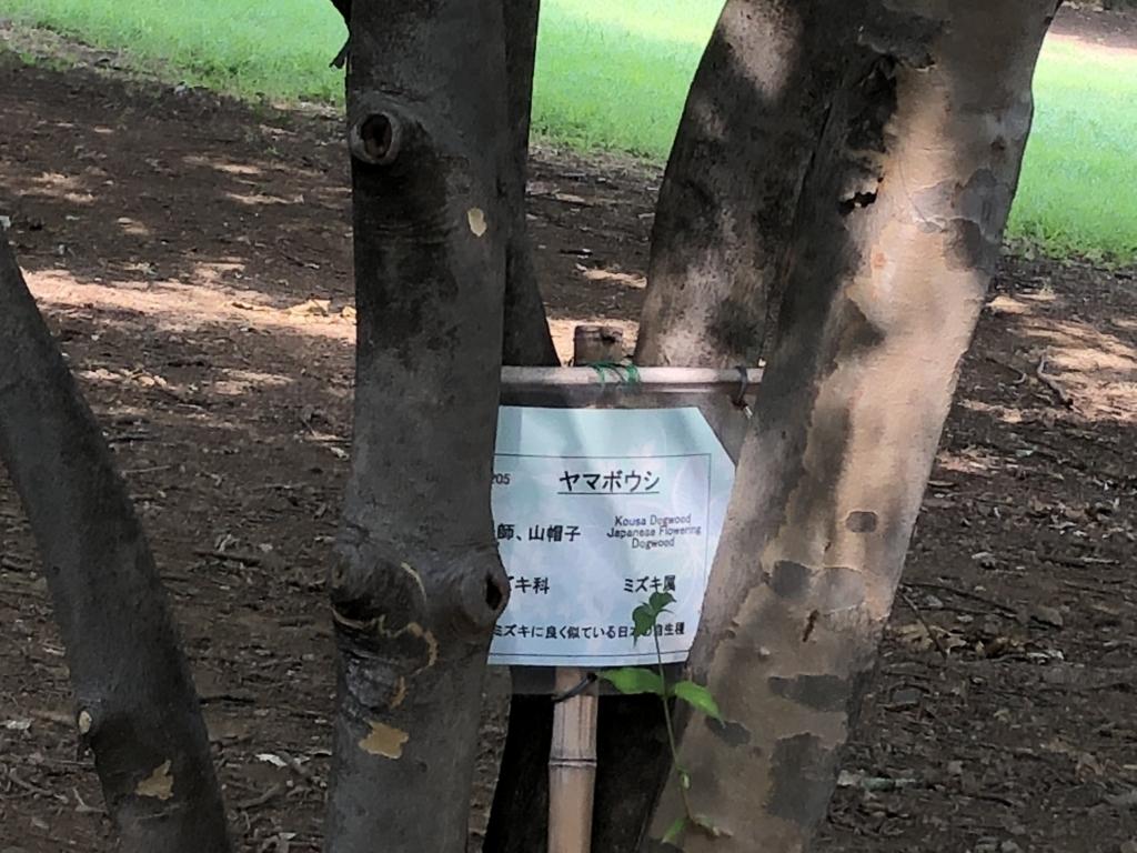f:id:hideki-sansho:20180724140957j:plain