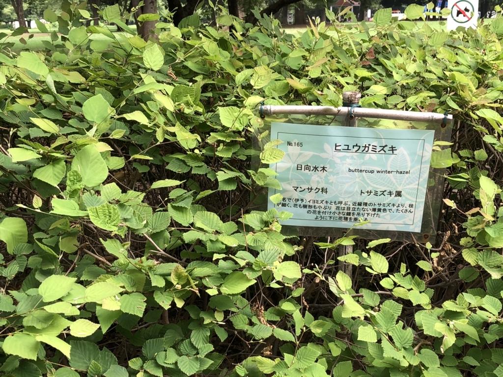 f:id:hideki-sansho:20180724141225j:plain