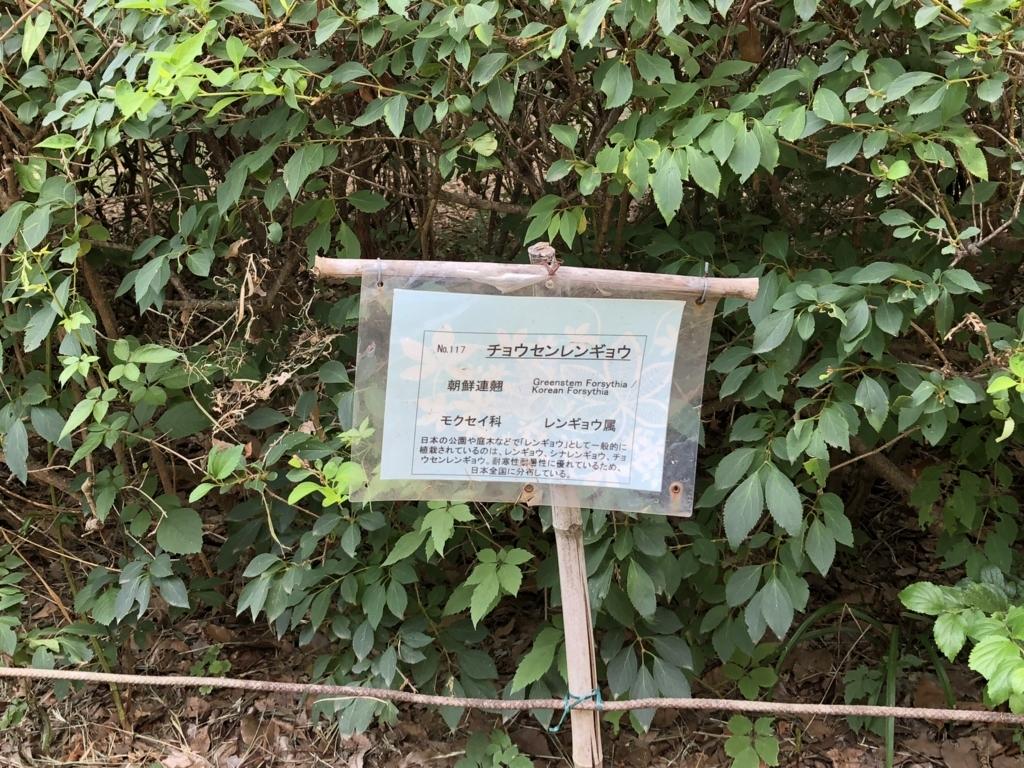 f:id:hideki-sansho:20180724141242j:plain