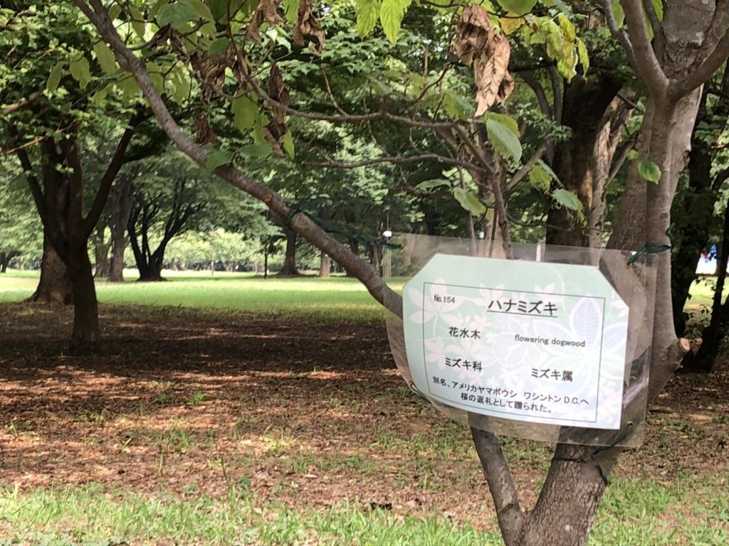 f:id:hideki-sansho:20180724141309j:plain