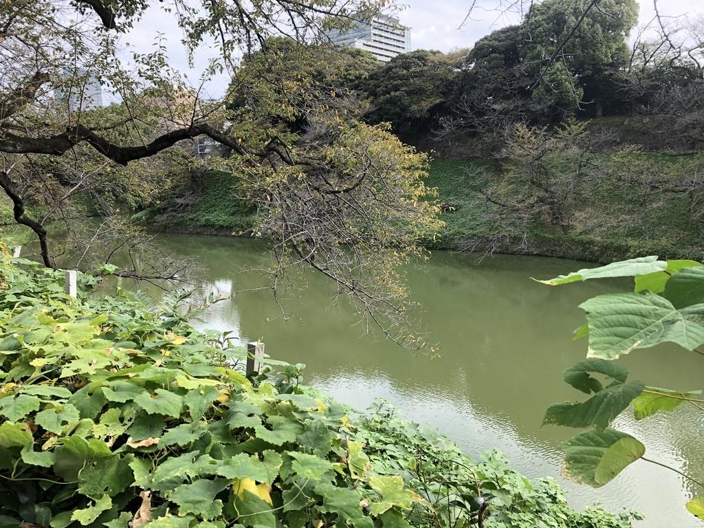 f:id:hideki-sansho:20181010141110j:plain