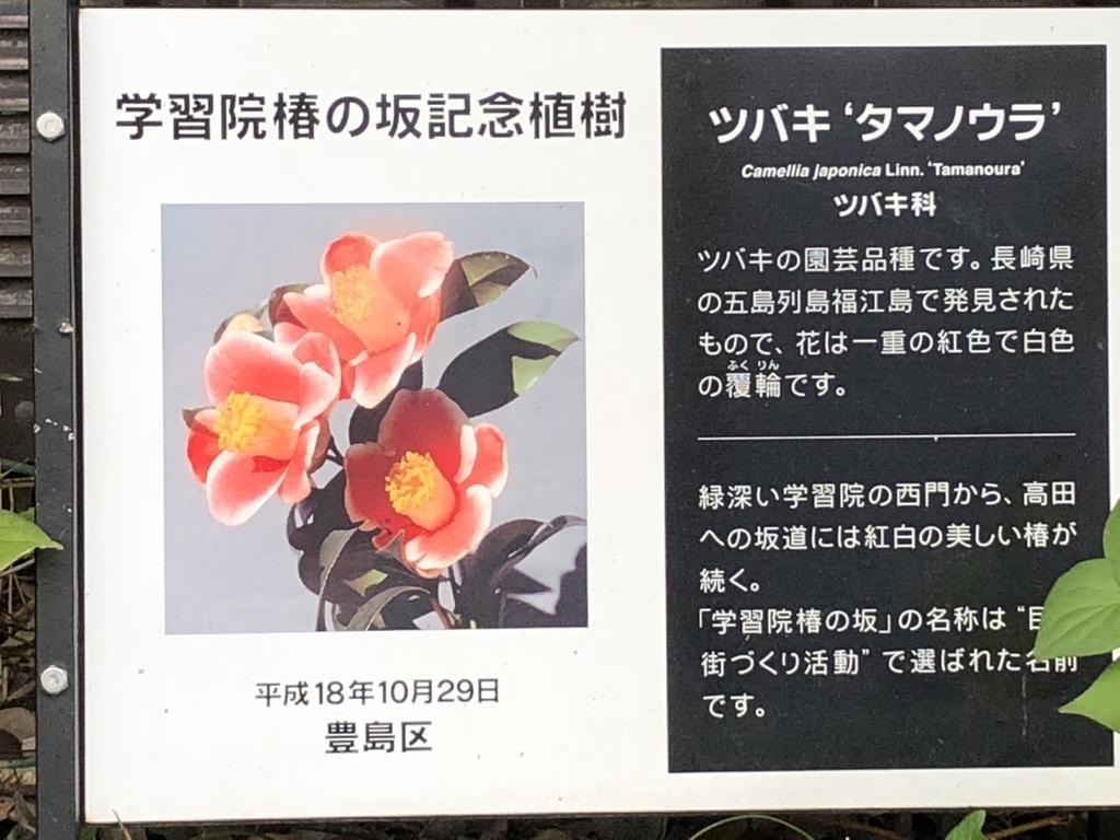 f:id:hideki-sansho:20181101163929j:plain