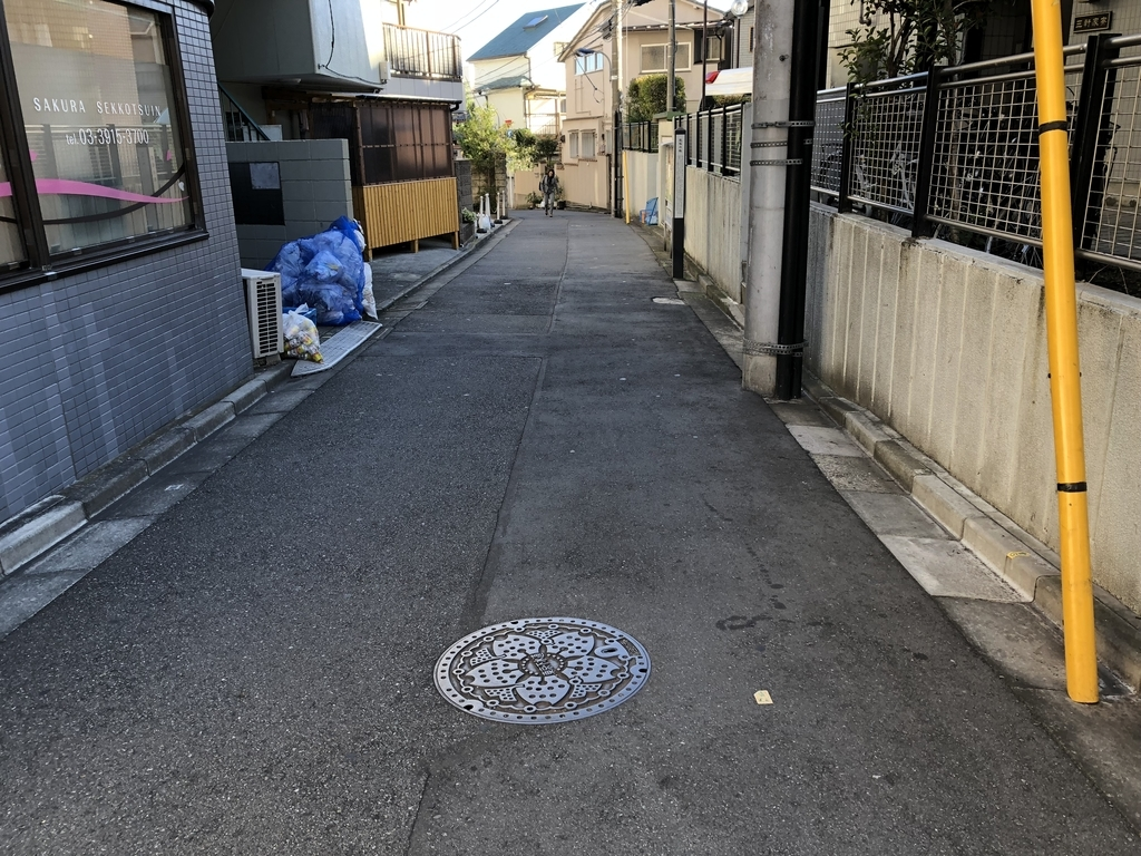 f:id:hideki-sansho:20181115142159j:plain