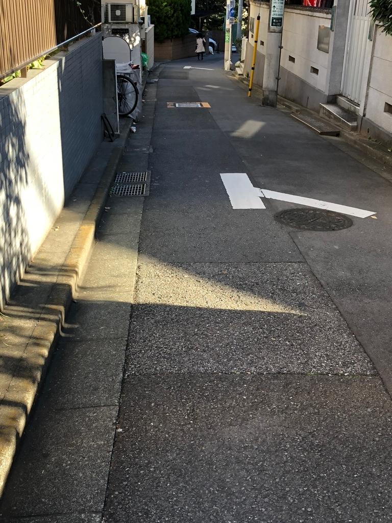 f:id:hideki-sansho:20181115142249j:plain
