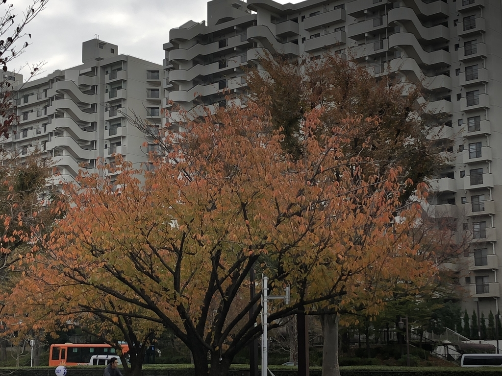f:id:hideki-sansho:20181119130104j:plain
