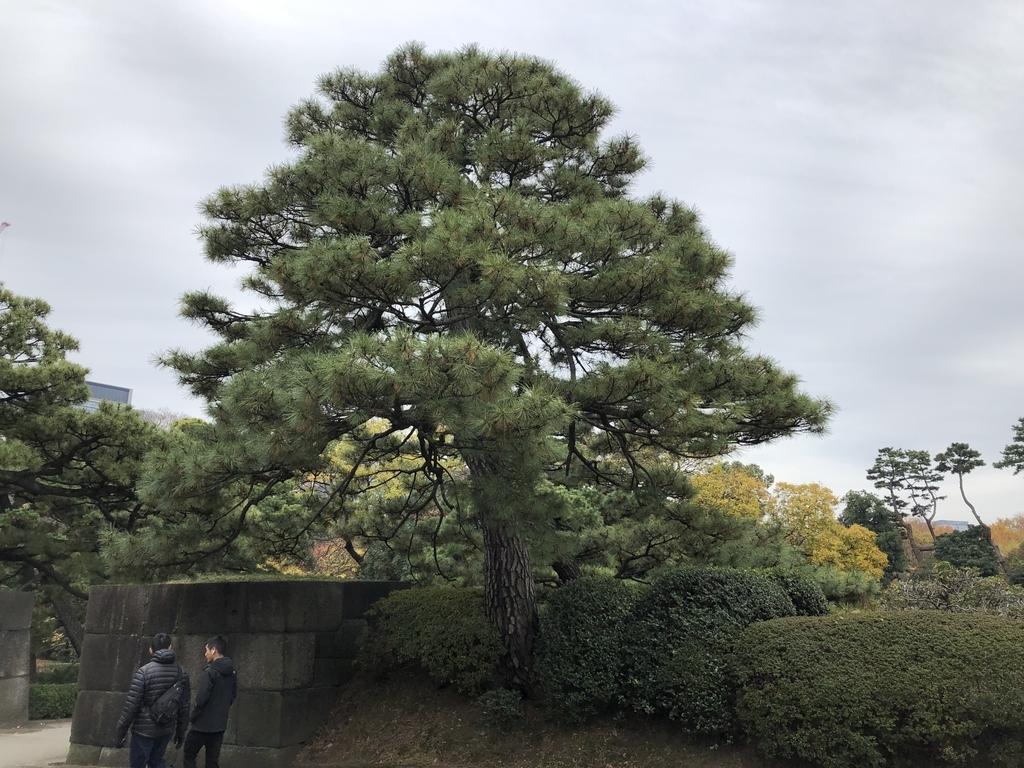 f:id:hideki-sansho:20181211164135j:plain