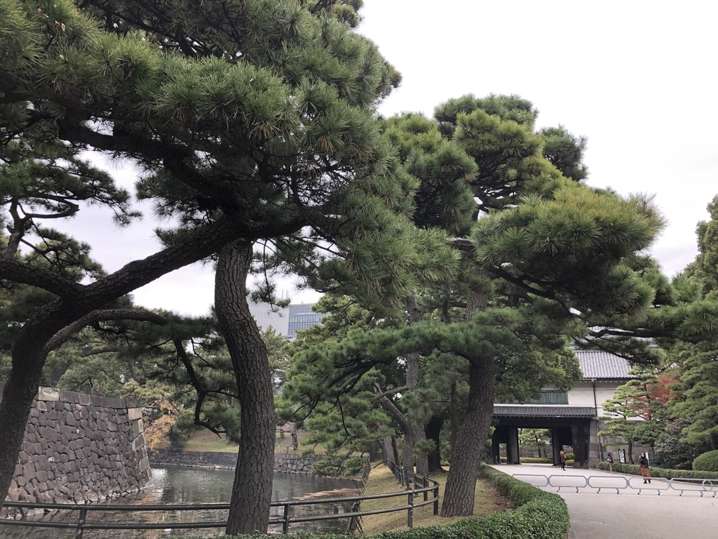 f:id:hideki-sansho:20181211164150j:plain