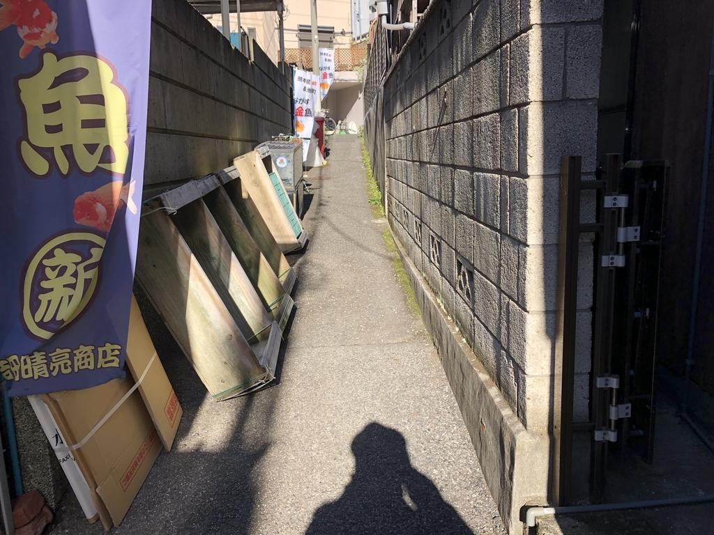 f:id:hideki-sansho:20181214200259j:plain