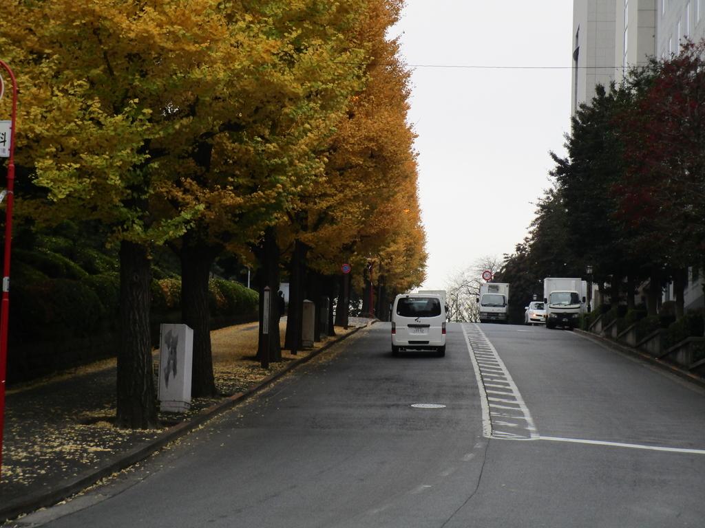 f:id:hideki-sansho:20190119103308j:plain