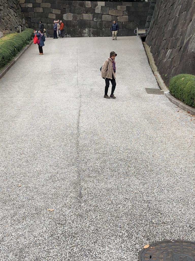 f:id:hideki-sansho:20190124153529j:plain