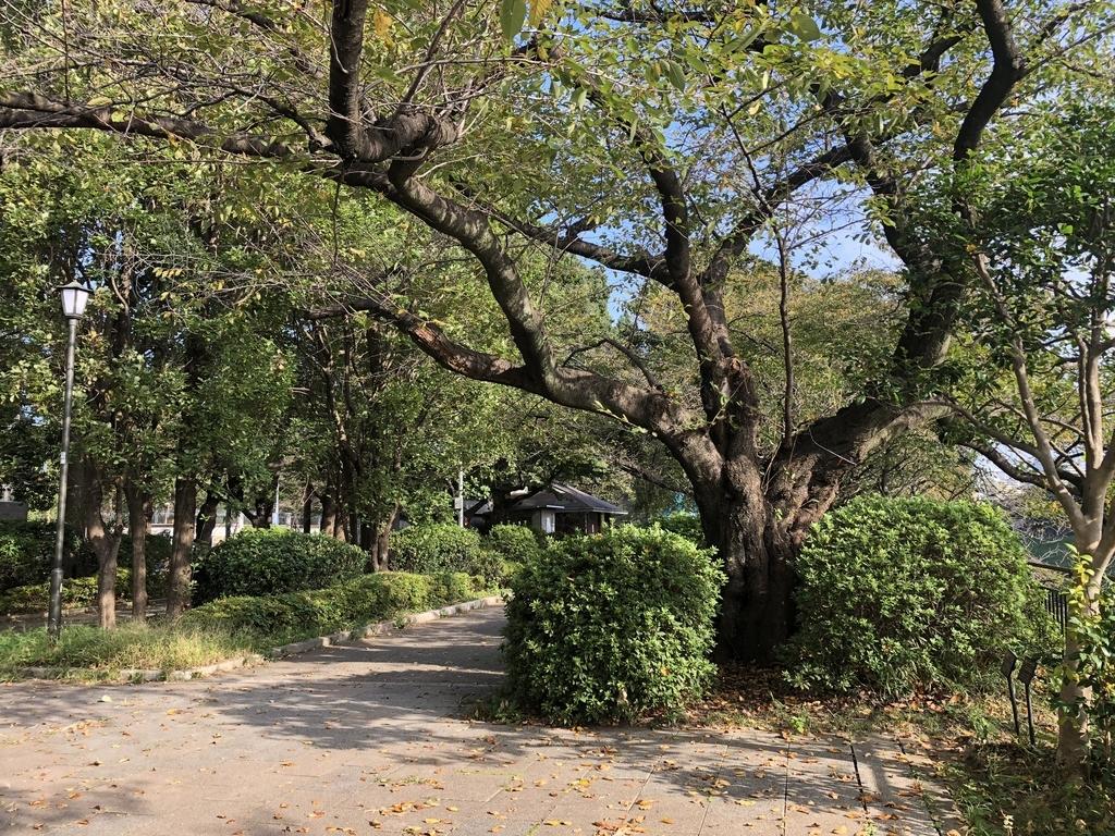 f:id:hideki-sansho:20190131160521j:plain