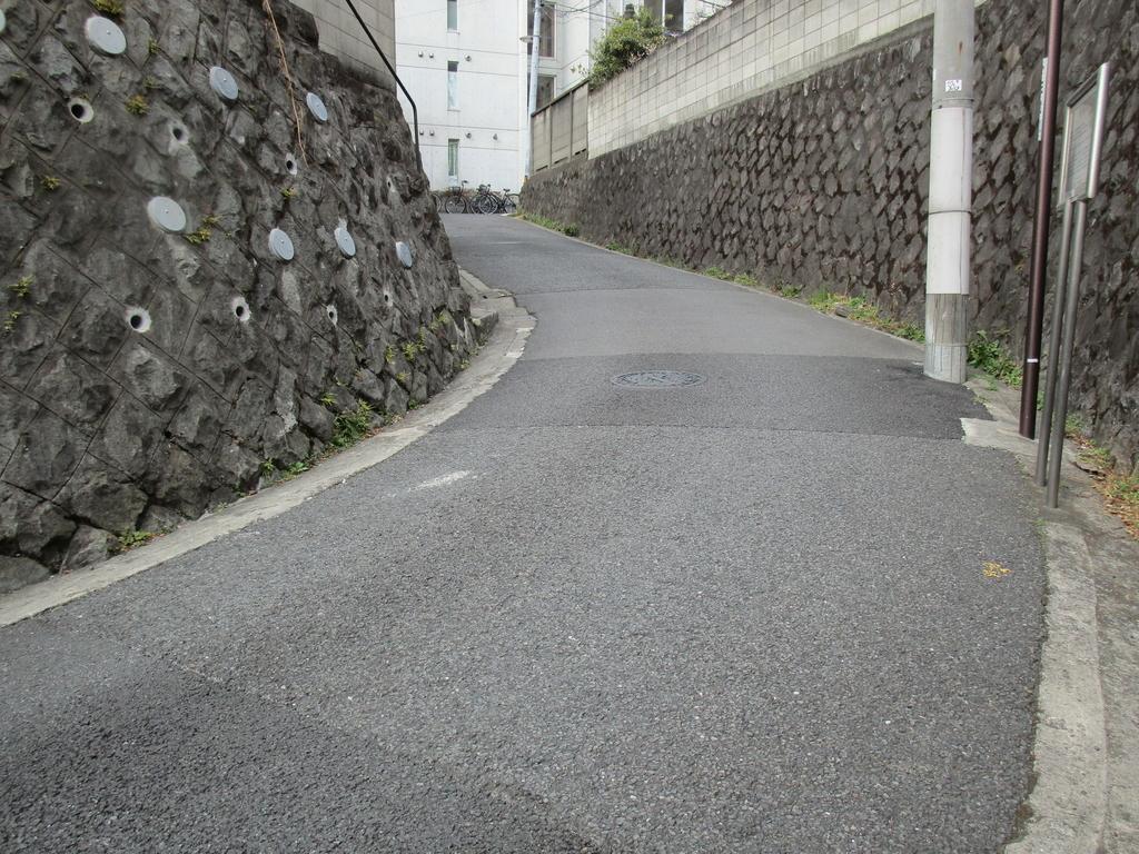 f:id:hideki-sansho:20190308135753j:plain