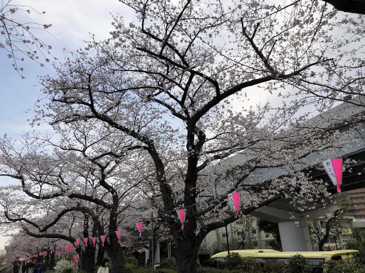 f:id:hideki-sansho:20190328190806j:plain