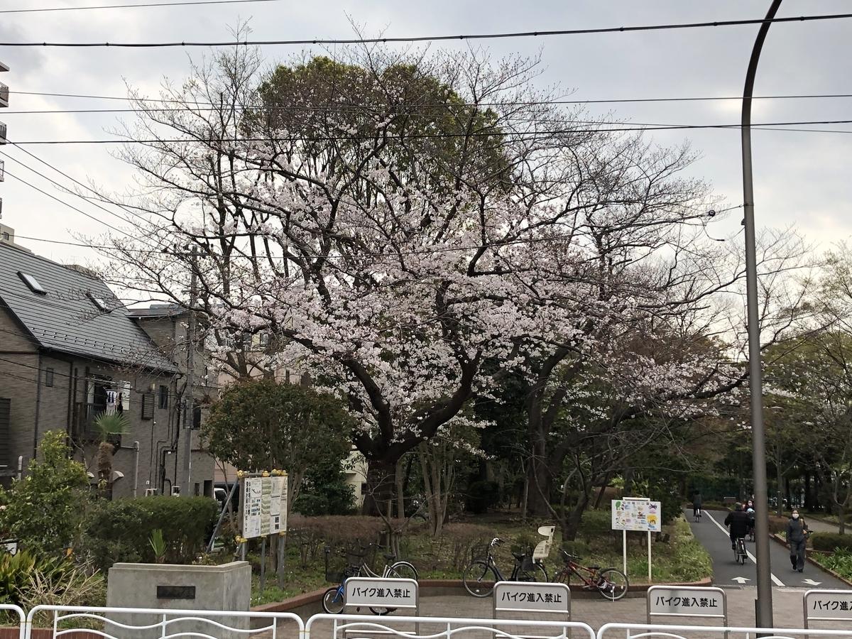f:id:hideki-sansho:20190328200107j:plain