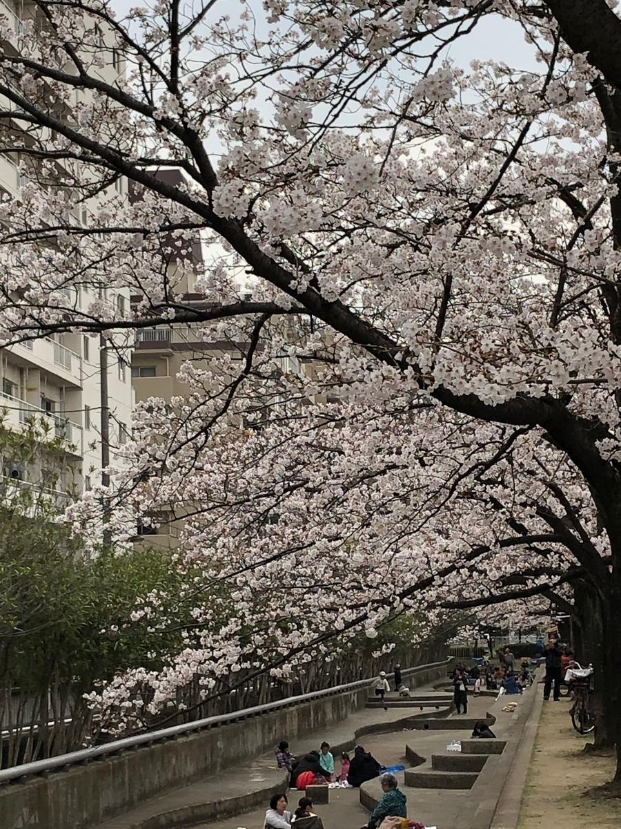 f:id:hideki-sansho:20190328200415j:plain