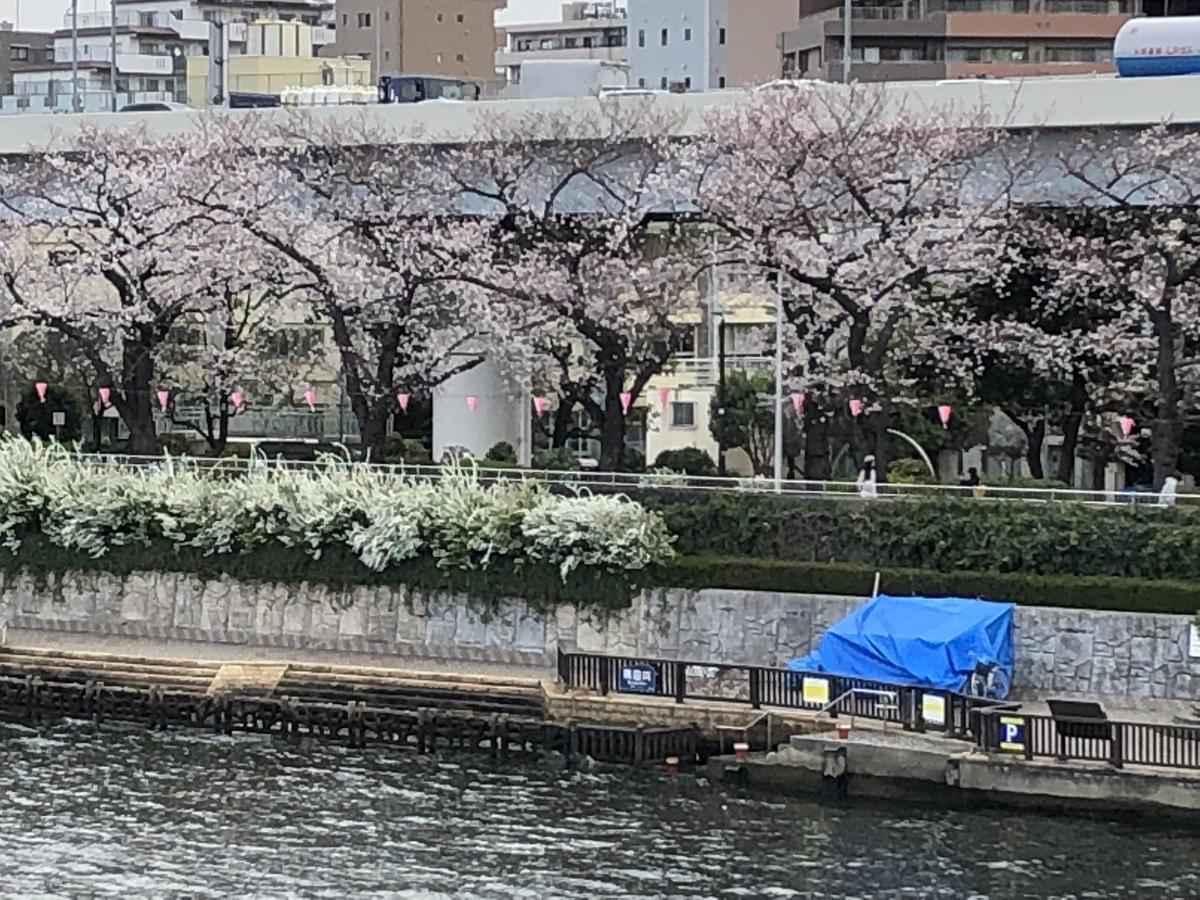 f:id:hideki-sansho:20190329063922j:plain
