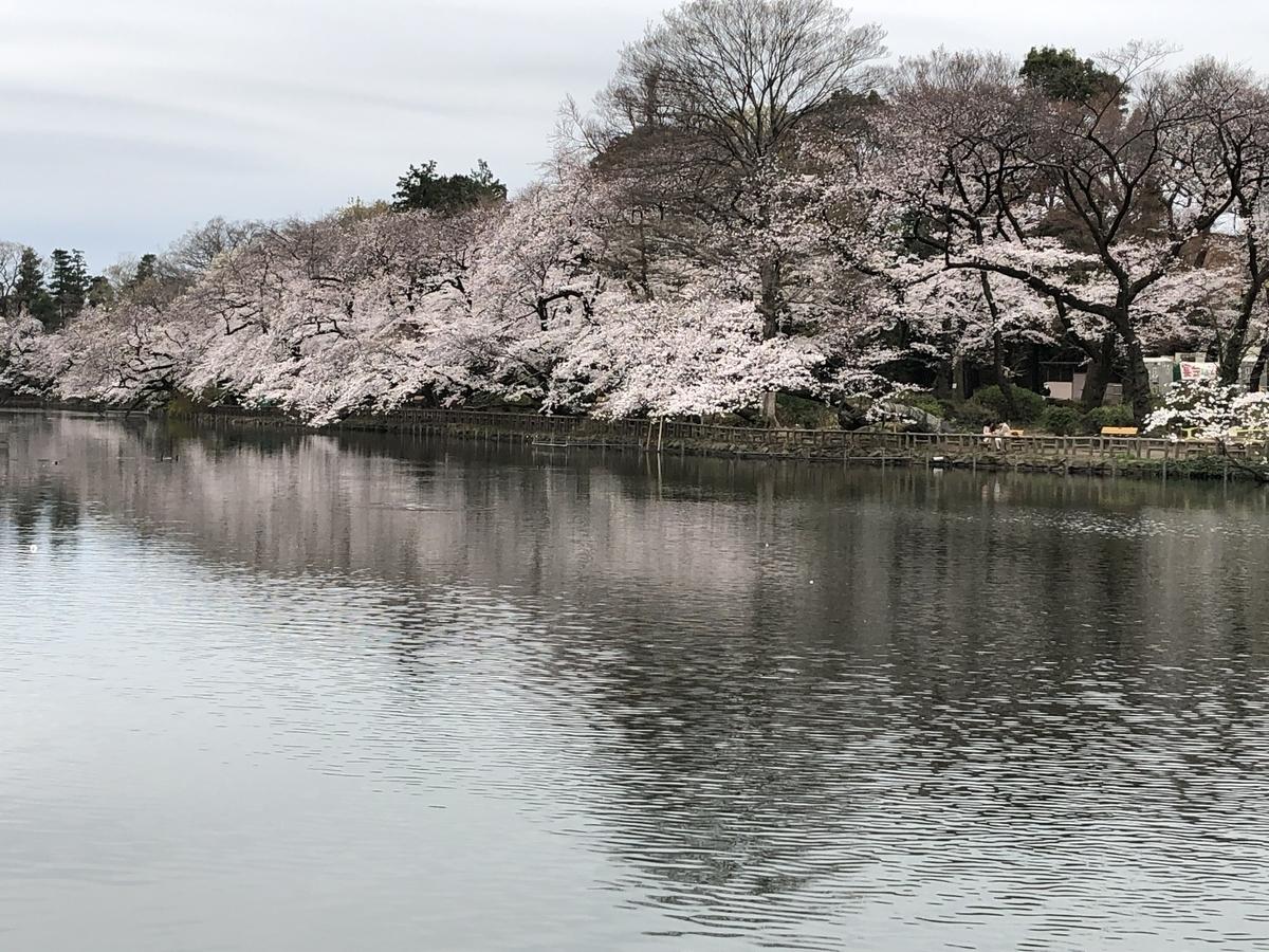 f:id:hideki-sansho:20190329154110j:plain