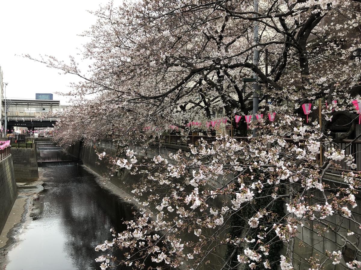 f:id:hideki-sansho:20190329155239j:plain