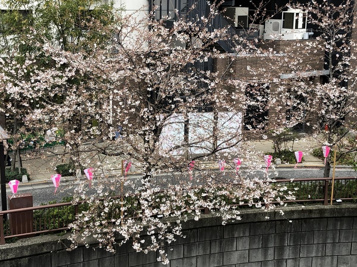 f:id:hideki-sansho:20190329155255j:plain
