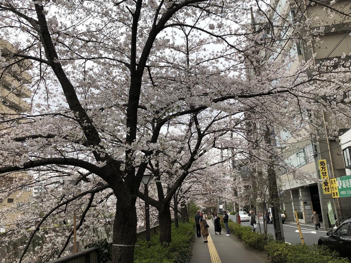 f:id:hideki-sansho:20190329155405j:plain
