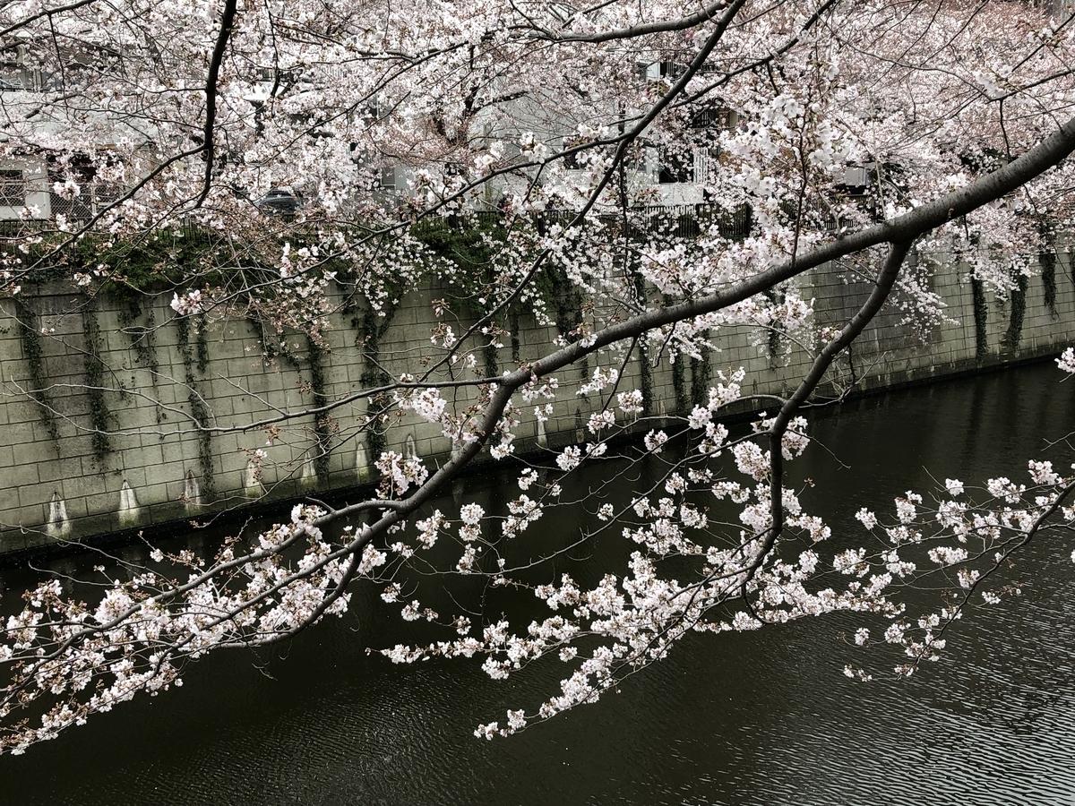 f:id:hideki-sansho:20190329155605j:plain
