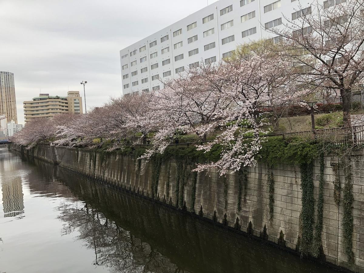 f:id:hideki-sansho:20190329155732j:plain