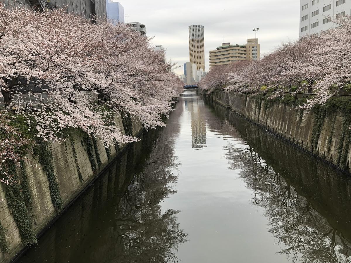 f:id:hideki-sansho:20190329155748j:plain