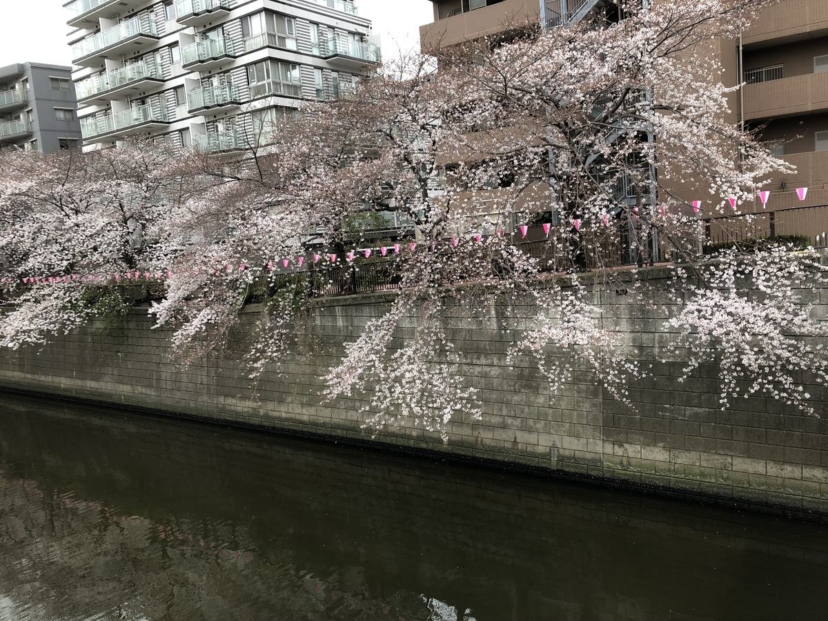 f:id:hideki-sansho:20190329155804j:plain
