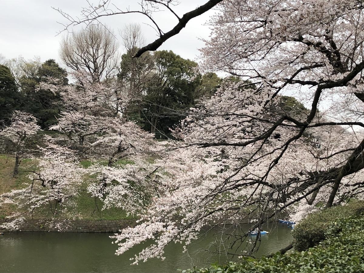 f:id:hideki-sansho:20190329162959j:plain