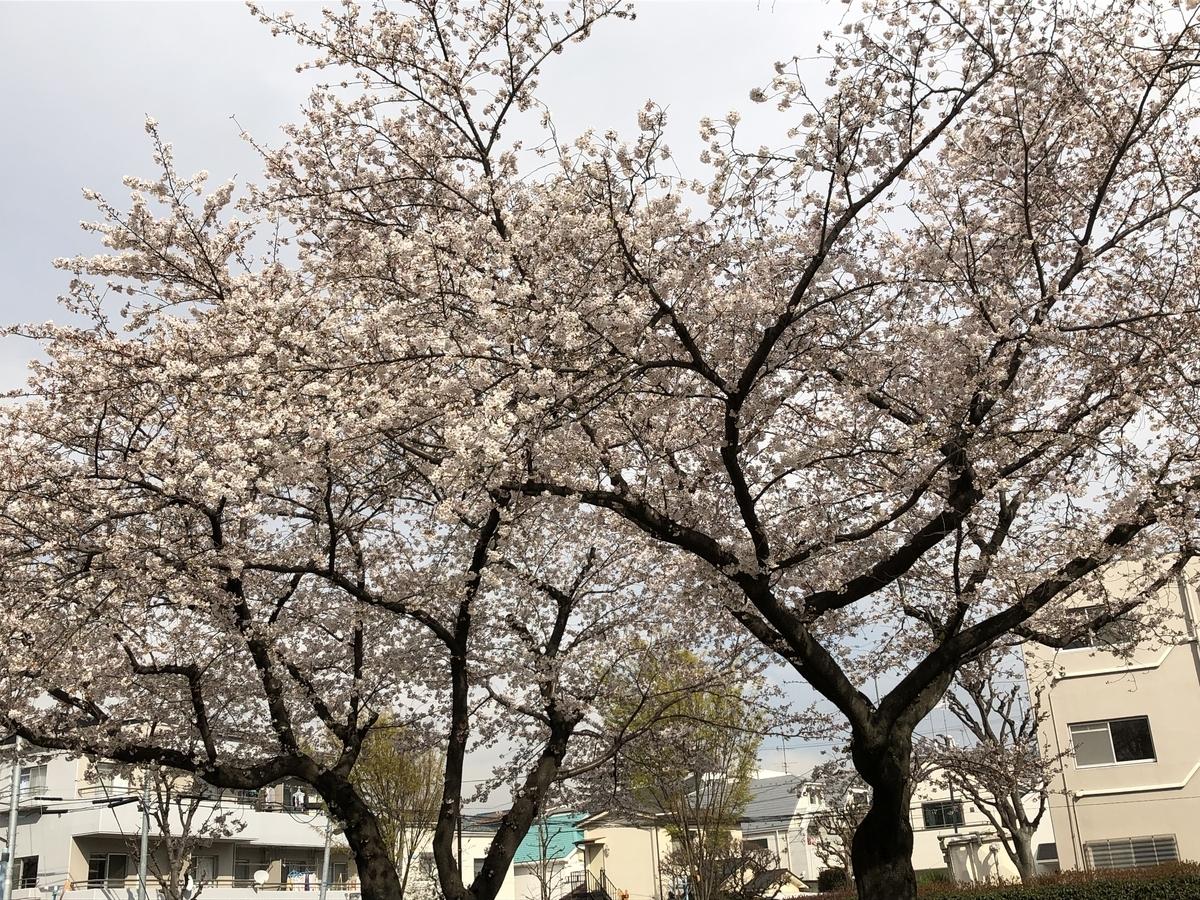 f:id:hideki-sansho:20190402203122j:plain