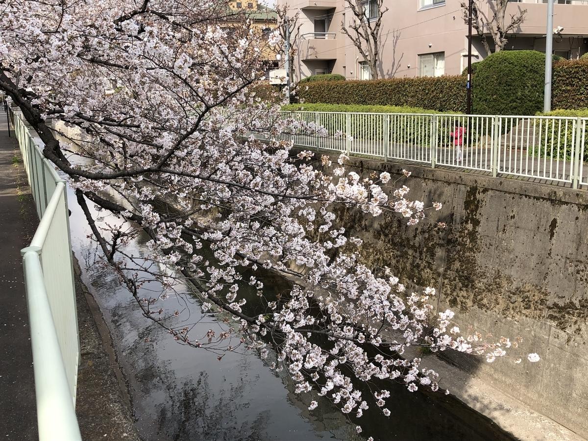f:id:hideki-sansho:20190402203207j:plain