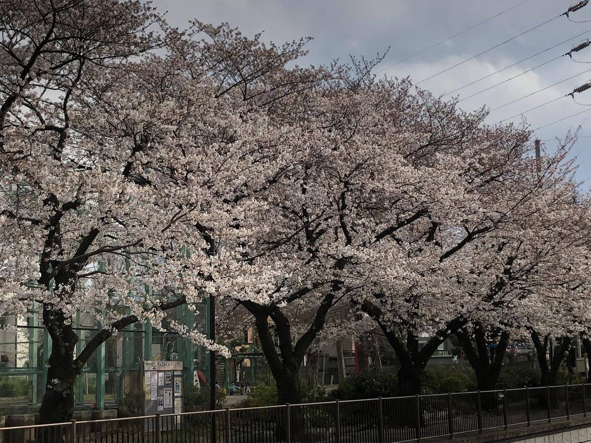 f:id:hideki-sansho:20190402203256j:plain