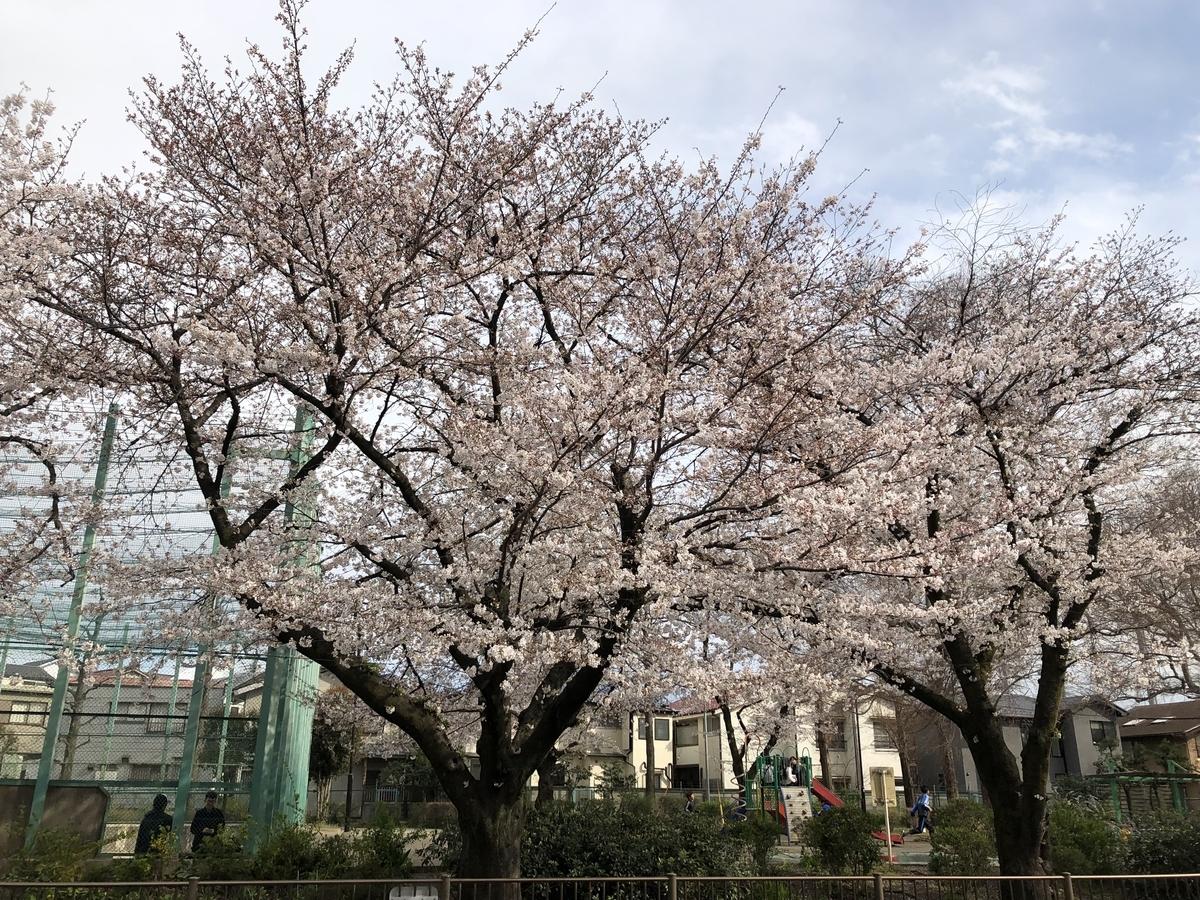 f:id:hideki-sansho:20190402203311j:plain