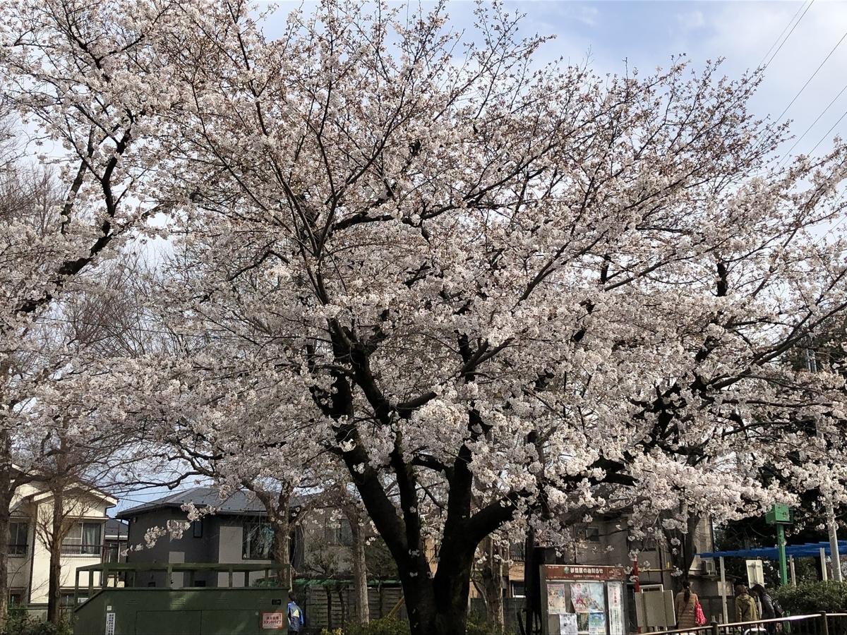 f:id:hideki-sansho:20190402203329j:plain