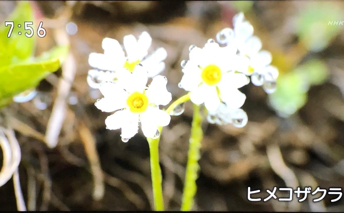 f:id:hideki-sansho:20190904151201j:plain