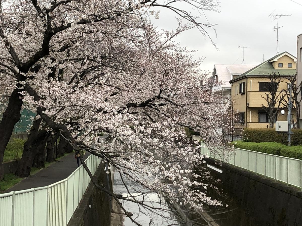 f:id:hideki-sansho:20200401190128j:plain