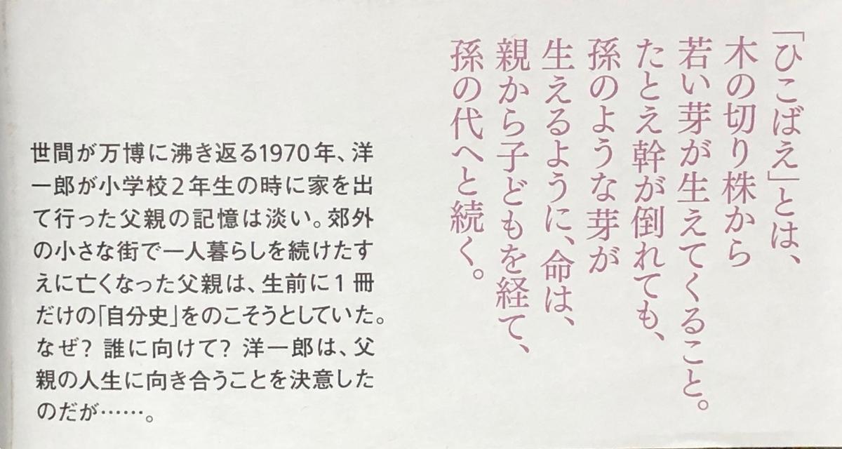 f:id:hideki-sansho:20200422170538j:plain