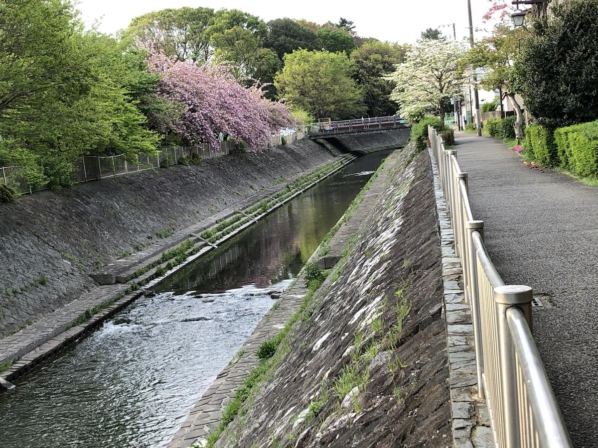 f:id:hideki-sansho:20200503111328j:plain