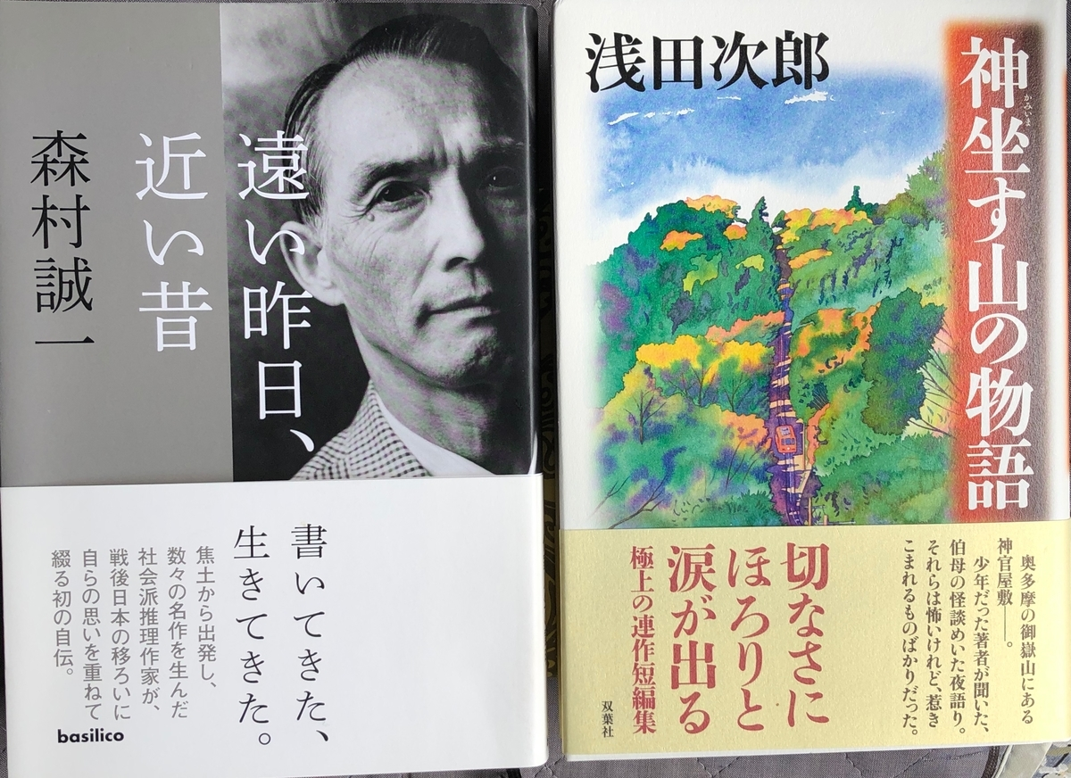 f:id:hideki-sansho:20200528195435j:plain